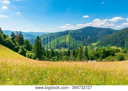 Countryside Fields And Meadows On Hills In Summer. Idyllic Mountain Landscape On A Sunny Day. Scener