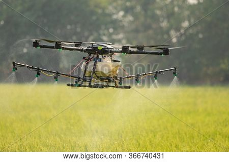 Agriculture Drone Flying Over The Rice Field To Sprayed Chemical Or Fertilizer. Technology For Agric