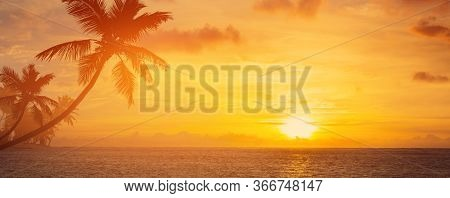 Summer Vacation Background; Palm Trees Silhouette On Sunset Tropical Beach
