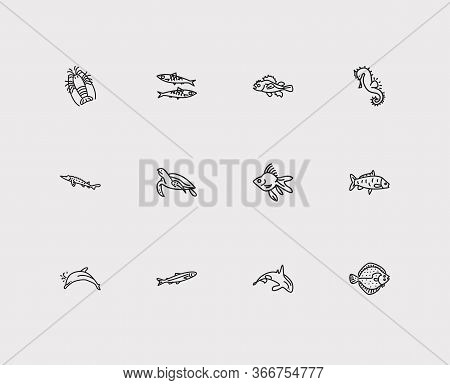 Fauna Icons Set. Spiny Lobster And Fauna Icons With Sea Turtle, Carp Fish And Sardine. Set Of Beach
