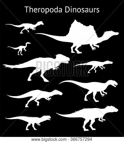 Silhouettes Of Theropoda Dinosaurs. Set. Side View. Monochrome Vector Illustration Of White Silhouet