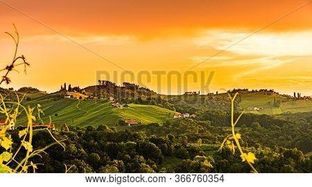 Panorama Of South Styria Vineyards Landscape In Eckberg Near Gamlitz, Austria. View At Vineyard Fiel