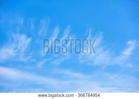 Unusual clouds as feathers in the light blue sky. Natural background with space for your own text
