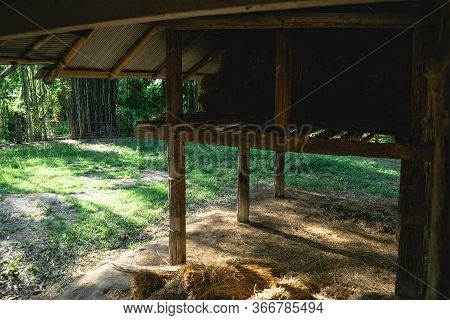 Sheds -farm Grass Sheds In Asia Evening
