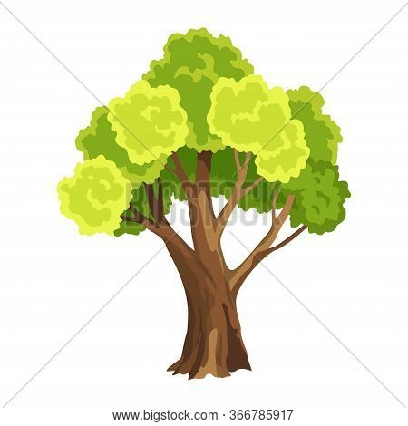 Tree With Green Leafage. Abstract Stylized Tree. Watercolor Foliage. Natural Illustration