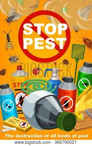 Pest Control, Disinsection Service. Vector Insects Extermination Equipment. Bugs And Cockroach, Ant