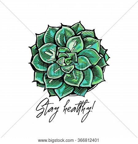 Handdrawn Colored Greeting Card With Flatlay Succulent And Text
