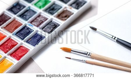 Watercolors Palette With Tints And Brushes For Paints On A White Paper Background