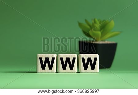 Www - Business Concept On A Green Background. Wooden Cubes And Flower In A Pot.