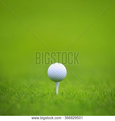 Golf Ball On Tee On Green Grass Of Golf Course Background, Backgrounds For Banner Foth Copy Space Fo