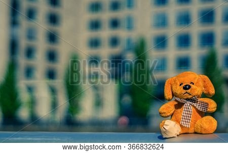 A Small Cuddly Toy Was Enjoying The View In Westhafen,frankfurt