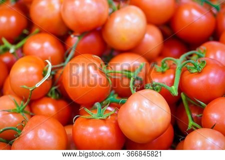 Tasty Red Tomatoes. Summer Tray Agricultural Farm Market Full Of Organic Vegetables. Selective Focus