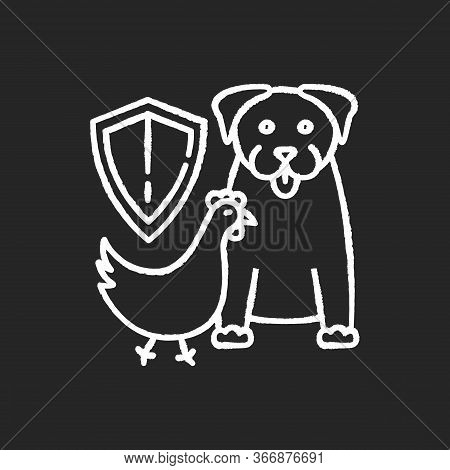 Wildlife Protection Chalk White Icon On Black Background. Rescue Domestic Animal. Shelter Campaign F
