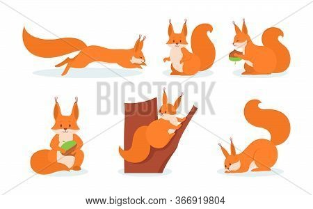 Cute Squirrels Flat Icon Set. Cartoon Funny Furry Squirrels Running, Sitting On Tree, Holding Nut Is