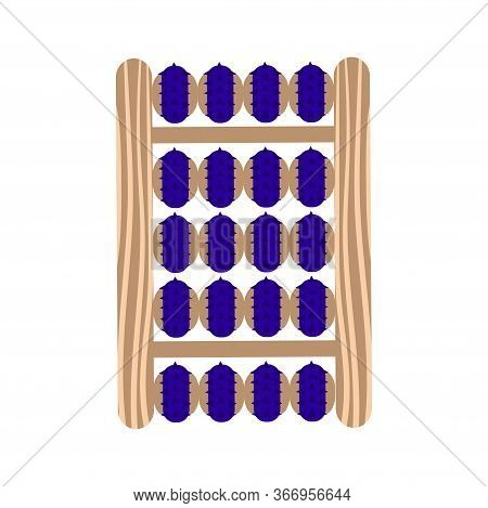 Massage Applicator In A Wooden Case For Massage And Self-massage. Vector Illustration.