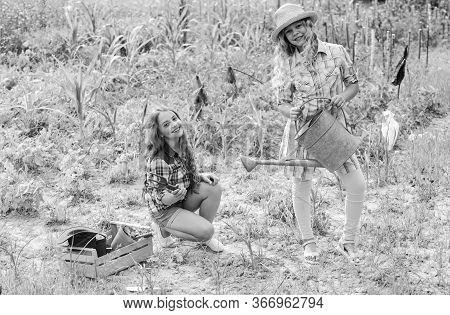 Garden And Beds. Girls Planting Plants. Agriculture Concept. Growing Vegetables. Planting Vegetables