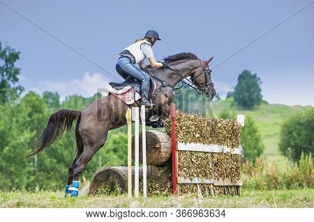 Eventing: Equestrian Rider Jumping Over An A Brance Fence Obstacle