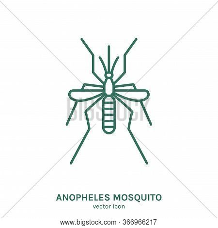 Mosquito Sign. Blood-sucking Insect Pictogram. Outline Icon. Graphic Design For Print, Web, Mobile A