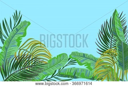 Vector Tropical Leaves On Blue Background. Exotic Botanical Background Design. Vector Backdrop With