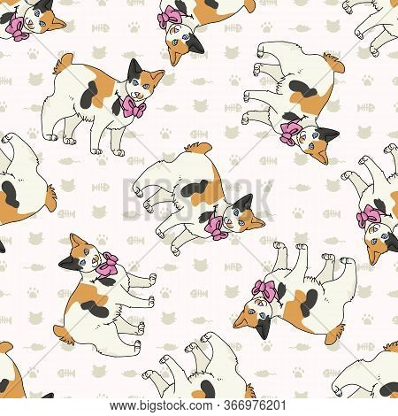 Cute Cartoon Japanese Bobtail Cat With Pink Bow Seamless Vector Pattern. Pedigree Kitty Breed Domest