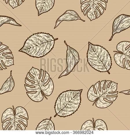 Seamless Set Rose, Lily And Monstera Leaf, Isolated Plant.