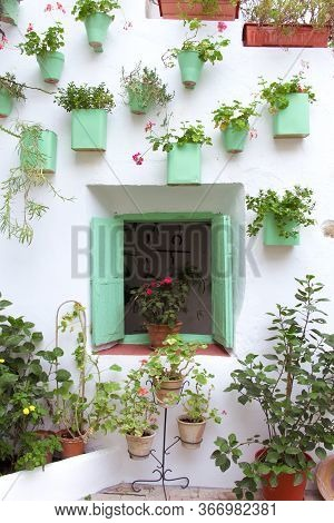 Andalusian patio facade with wooden window decorated with pots and hanging plants. Cordoba, Andalusia, Spain. Travels and tourism.