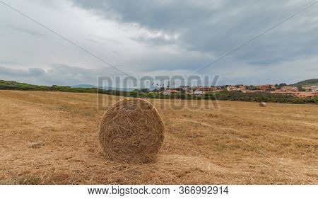 Hay Bail Harvesting In Golden Field Landscape, South Sardinia
