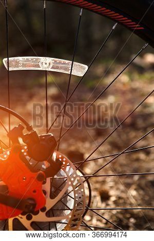 Bicycle Wheel With Elements Closeup: Disc Brakes, Spokes, Reflector. Background On The Theme Of Cycl