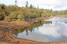 Reflections In Trenchford Reservoir, Devon, In Autumn