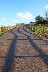Shadows Of A Fence On A Country Road