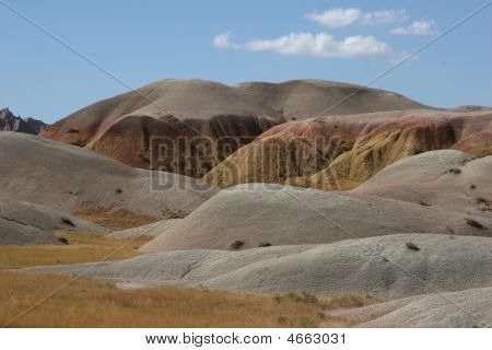 Velvet Landscape