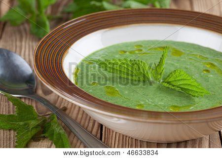 Nettle Cream Soup
