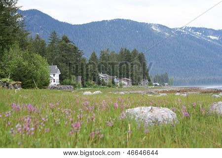 Southeastern Alaska Coastal Homes