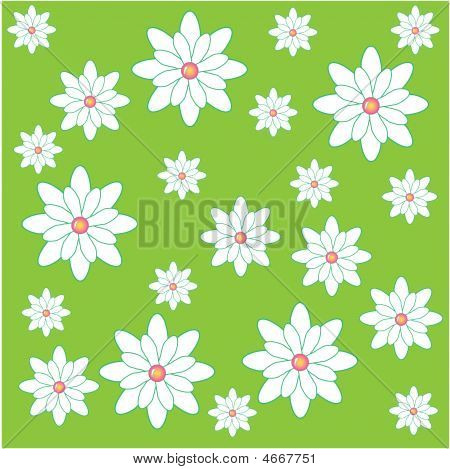 Pretty Flower Pattern