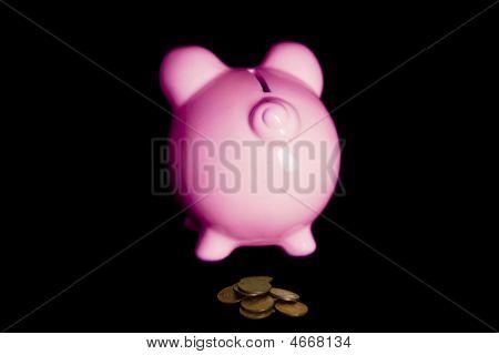 Pink Piggy Bank Poop