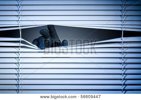 Thief Peeking Through A Window