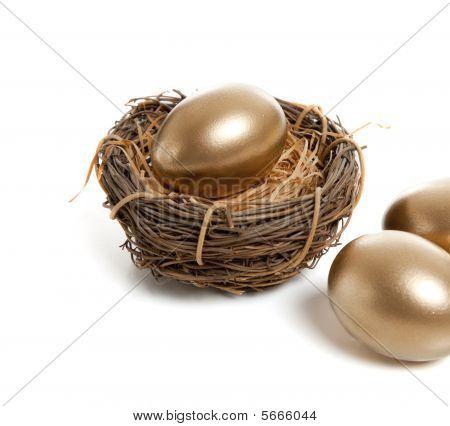 A Golden Egg In Nest