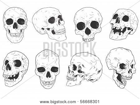 Hand_drawn_skulls