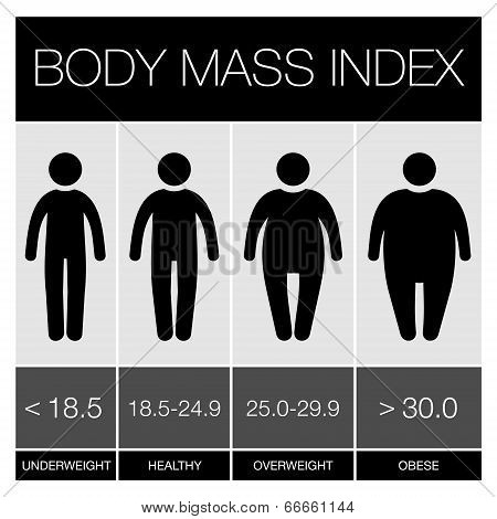 Body Mass Index graphic Icons. Vector