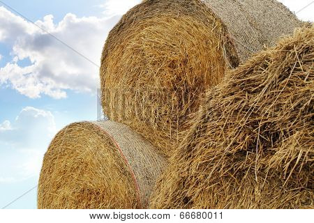 Straw Roll Bales