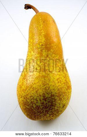 Abate Fetel, Typical Italian Pear