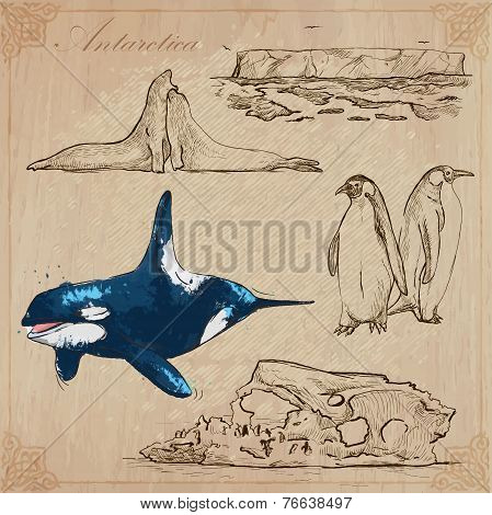 Antarctica: Travel Around The World. Vector Drawings.