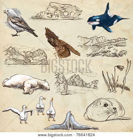 Polar Regions: Travel Around The World. Freehand Drawings.