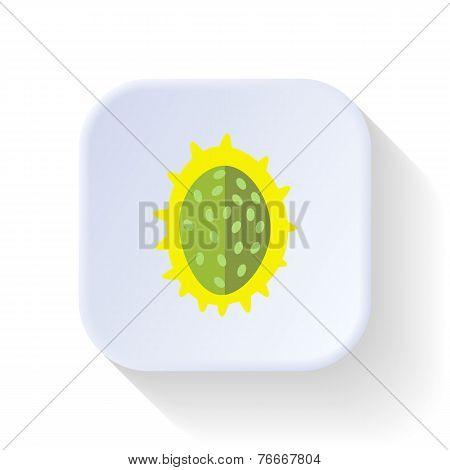 Beckon Fruit