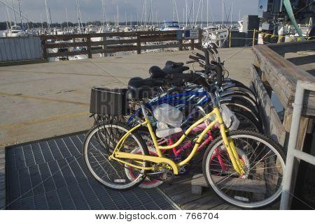 bikes at marina