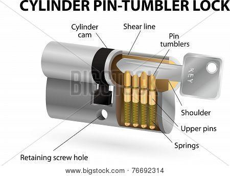 Cutaway pin-tumbler lock