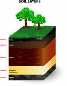 Soil Formation and Soil Horizons. Soil is a mixture of plant residue and fine mineral particles, which form layers. Vector diagram poster