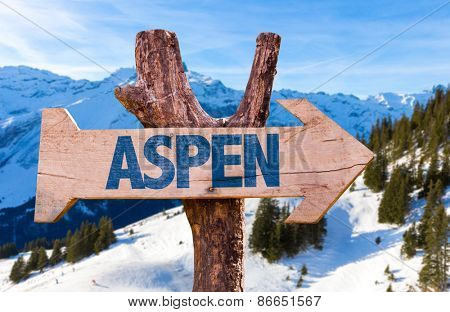 Aspen wooden sign with alps background