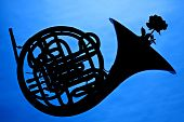 A French horn and rose flower in silhouette isolated against a blue background. poster
