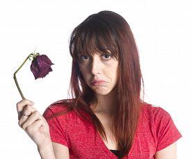 Close up Sad Woman Holding Dead Rose Flower